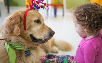 E-BOOK: Alguns benefícios das Terapias Assistidas por Animais (TAA)