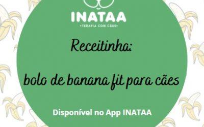 Receitinha: Bolo de banana fit para cães