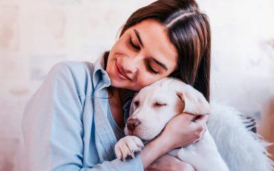 Setembro: mês de prevenção ao suicídio e como a interação humano-animal pode auxiliar
